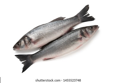 Two Sea bass fish isolated on white background