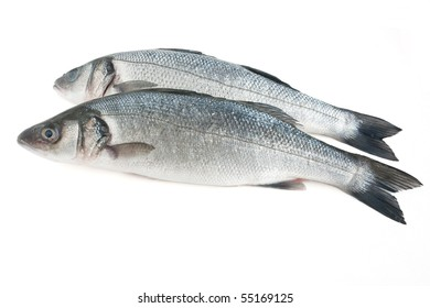 two sea bass isolated on white background with clipping path