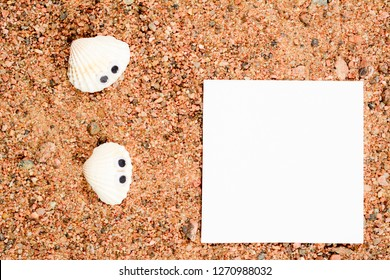 Two sea shell with googly eyes, lie on the sand and look at white paper for copy space. Close-up macro.