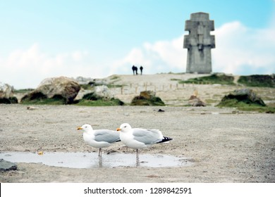 two seagulls sitting on the ground and in the back a crucifix monument at the cape Pen Hir, peninsula Crozon in France
