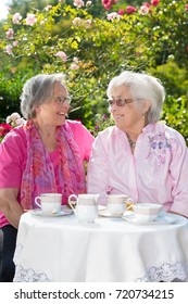 Two senior cheerful women relaxing over tea in garden on sunny day