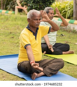 Two senior man doing alternate Nostril Breathing exercise or nadi shodhana pranayama at park on yoga mat at park - Concept of healthy active old people lifestyle