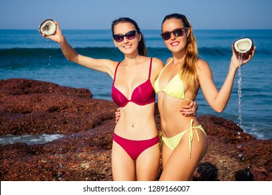 two sexy and young women in stylish bikini swimsuit holding a coconut on the ocean tropical paradise shore. sexy perfect fit girlfriends models in water with coconut milk drops pouring coco nut water