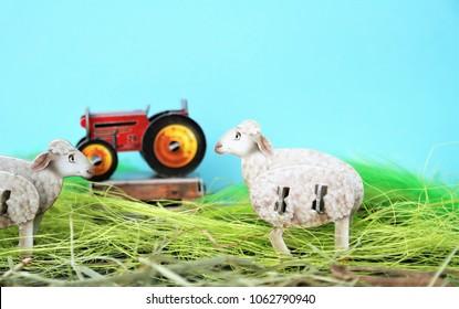 farm animal birthday invitation stock photos images photography