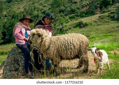 Two shepherd girls smile with their sheep, February 2013 Ayacucho Peru.