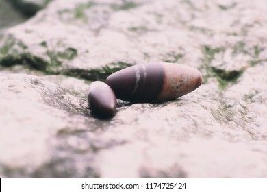 Two Shiva Lingam on a rock.