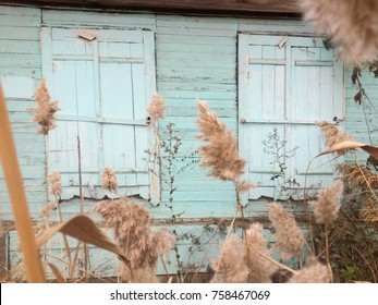 Two shuttered windows in the old abandoned house among the reeds. Poor house.