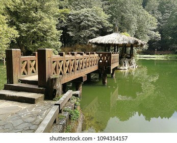 The two Sister pond in Alishan National Scenic Area, Chiayi Province, Taiwan