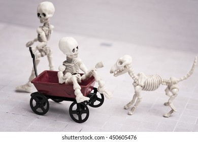 Two Skeleton playing red wagon and their skeleton dog