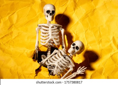 two skeletons crawl out of a hole in the paper cast shadows. sinister atmosphere on the eve of All Saints Day