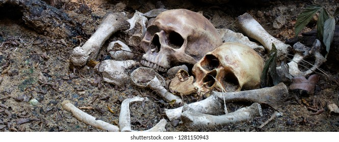 Two skulls and pile bone in the Graves discover by dig in cemetery / Select focus, Still life image and adjustment size for header, banner, cover, for background