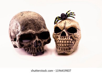 Two skulls and a spider on a white background. Halloween holiday