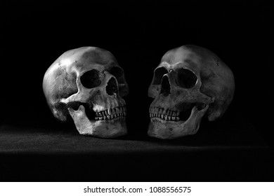 Two skulls which confrontation put on the dark table and black wall in morgue room dim light   / Still life image and Adjustment color black and white