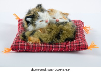Two sleeping cats on a pillow plush on a white background