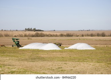 Two small bag silos used in agriculture to store grain at Victoria, province of Entre Rios, Argentina