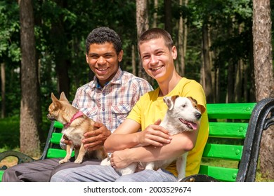 Two smiling african american and caucasian friends with dogs relaxed on the bench in park in summer