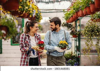 Two smiling heterosexual nursery garden workers holding pots with flowers, walking and chatting.