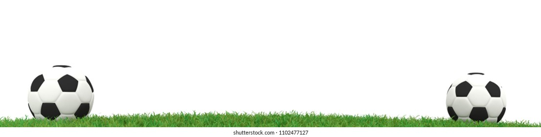 Two soccer ball on grass panorama background with space for text, 3d rendering