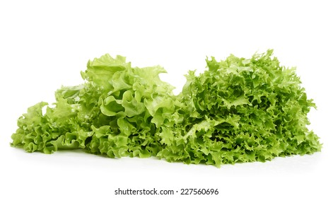 Two sorts of letuce isolated on white
