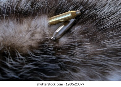 Two spent bullet casings on top of possum fur. Bokeh effect.
