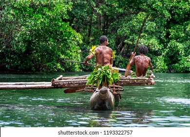 Two sportive indigenous tribal men with  paddles in a traditional canoe, natural green jungle with mangrove trees background, Melanesia, Papua New Guinea, Tufi