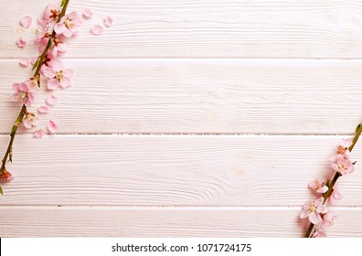 Two spring flowering branches with a lot of pink blossoms on white wooden background. Rustic composition, many spring tree flowers on vintage wood textured table. Close up, copy text space, top view.