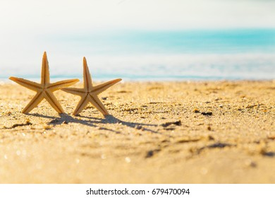 Two starfish with ocean. On white sand beach and seascape