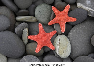 Two starfish on beach texture