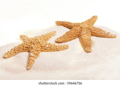 two starfish in sand, isolated on white