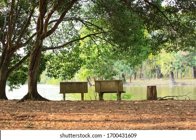 two stone chairs in the peaceful and quiet green park