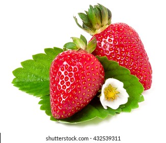 two strawberries with flower and leaves isolated on white background