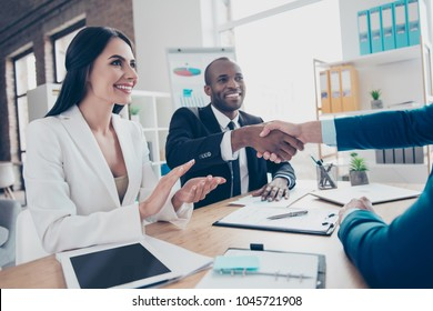 Two successful executive businesspeople celebrate completed  deal about their business with lawyer, sitting in work place, station, wearing suits, men shaking hands, woman applaud to them