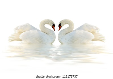 Two swans on the white surface.