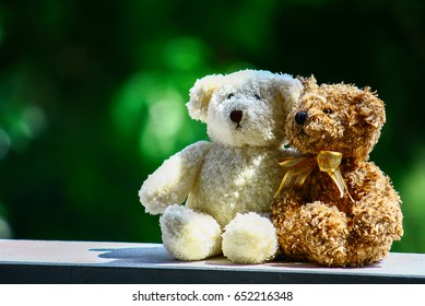 Two teddy bear in love, Valentine day concept