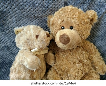 two teddy bears on soft blue blanket