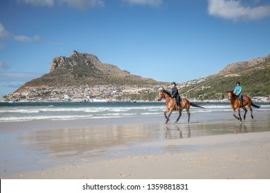 Two teenage girls cantering brown horses along the shoreline at the beach in the sunshine with beautiful mountains in the background