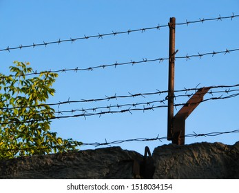 Two threads of monobasic barbed wire and several lines of dibasic barbed wire, covered with rust, stretched on old metal brackets over a concrete fence against a green shrub and clear blue sky