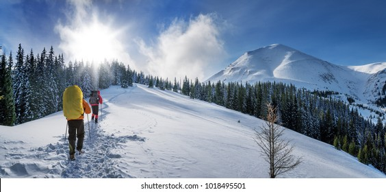 Two tourists climb the snow-covered winter mountain. Sunny weather and lots of snow around.