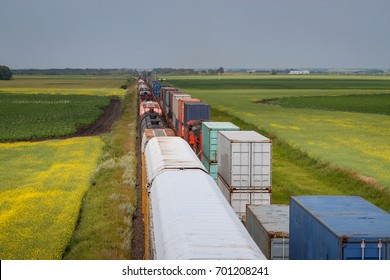 Two Trains Passing Through Vibrant Fields in Canadian Prairie