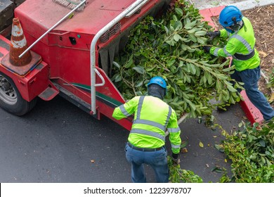 Two tree trimmers feeding woodchipper