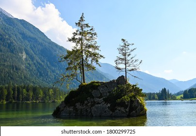 Two trees are growing on a rough rock that is surrounded by water of Lake Hintersee near Berchtesgaden, Germany.