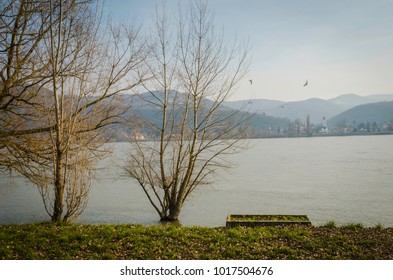 Two trees on the bank of Danube river with mountains at the background, early spring scene at the river