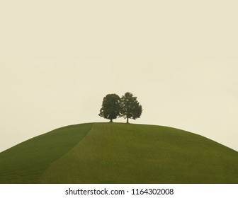 Two trees on a hilltop