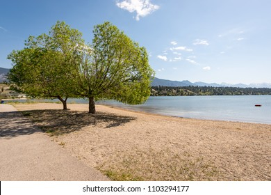 Two trees on the sandy beach creating an idyllic relaxing spot and view at James Chabot Provincial Park, Invermere on Lake Windermere, British Columbia
