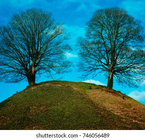 Two trees at the top of a hill, seen from below. Oxford Castle Mound in Oxford, England.