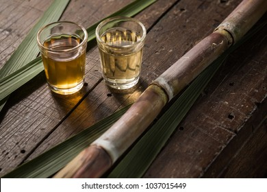 Two types of cachaça served in shot glasses and sugarcane trunk with leaves to compose. The cachaça on the left is aged in oak barrel and the cachaça on the right in Golden Trumpet Tree barrel.