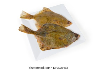 Two uncooked European plaices also known as flatfish on white square dish on a white background