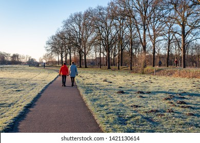 Two unidentified women hiking in the park. It is early in the morning of a sunny day in the winter season. The photo was taken in nature reserve Markdal near the city of Breda, North Brabant.