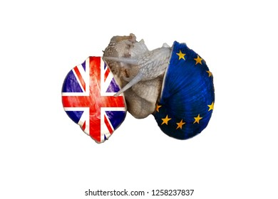 Two vineyard snails playing lovemaking. On the snail shells once the flag of England and on the other the EU flag. Concept Brexit