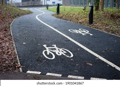 Two Way Cycle Path in University
